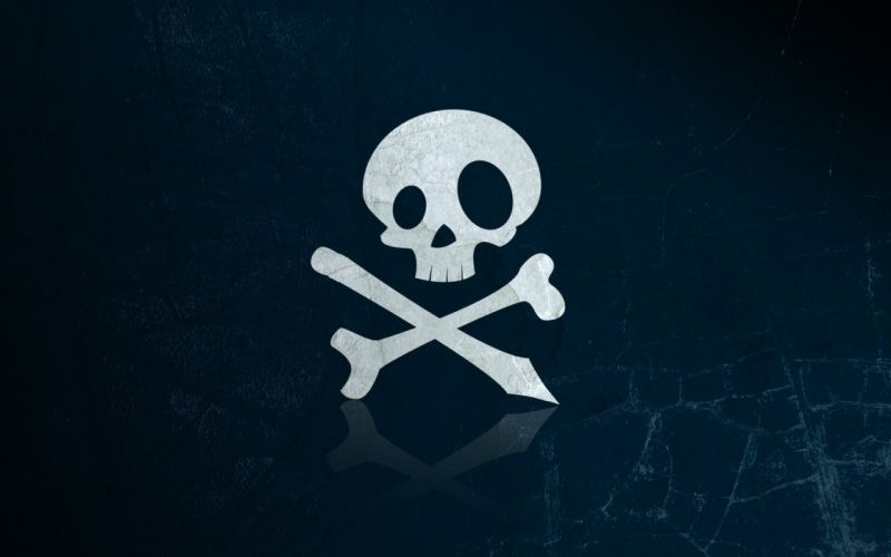 skull bone wallpaper