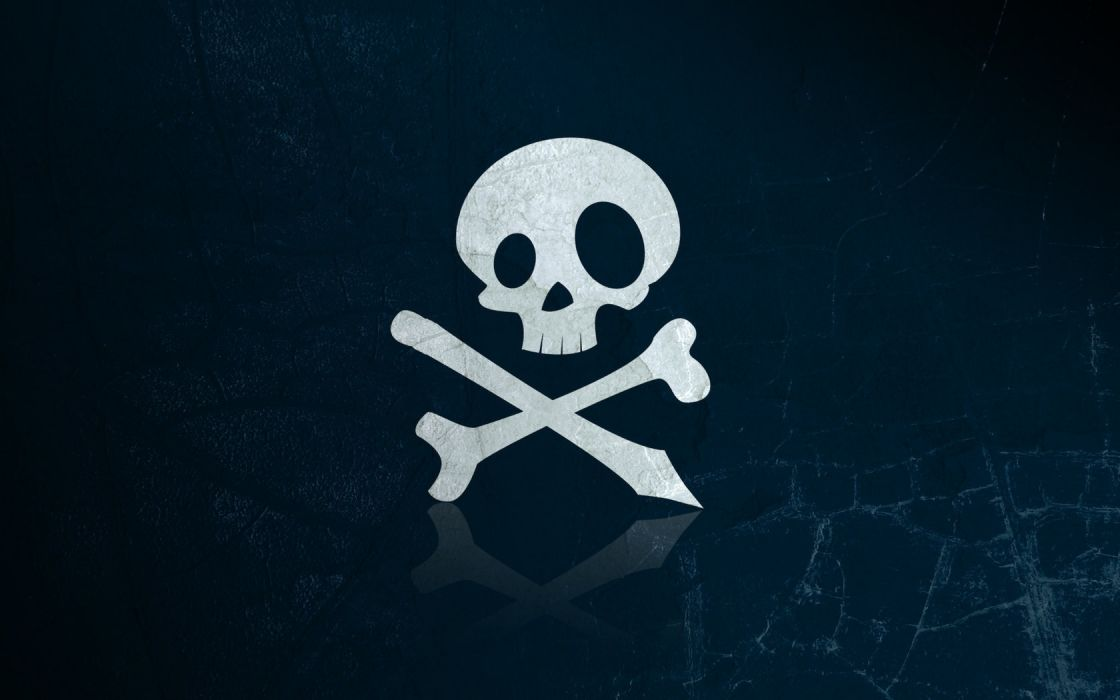 skull bone wallpaper