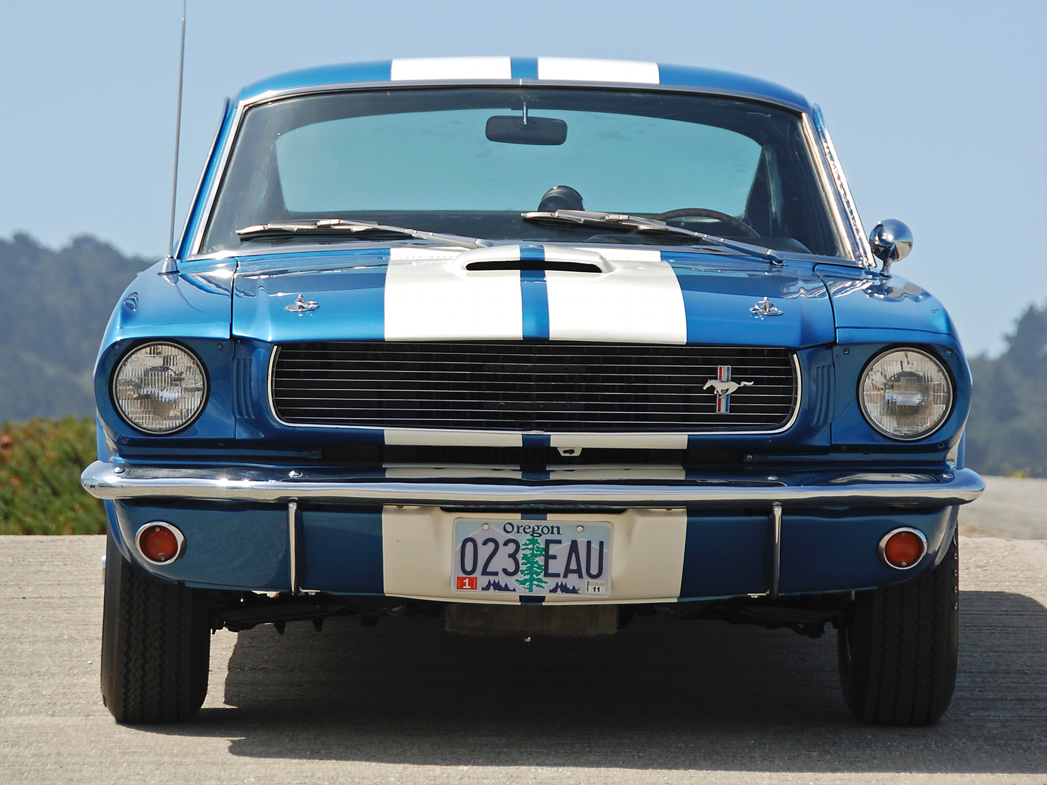 1965 Shelby GT350 fo