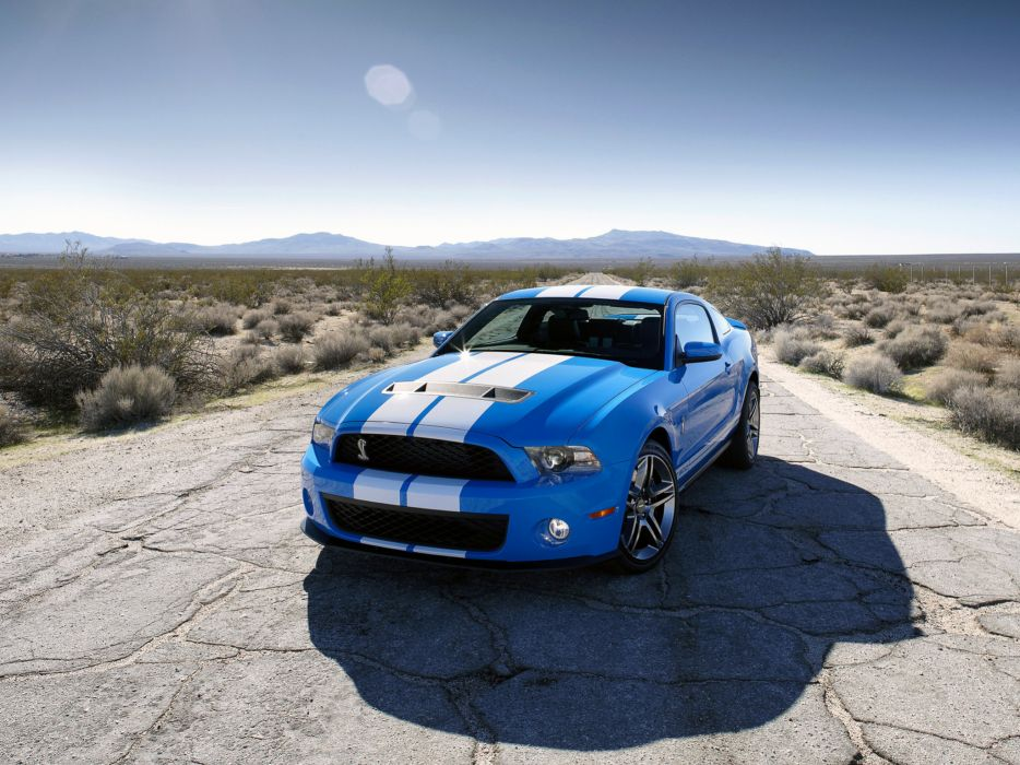 2009 Shelby GT500 ford mustang muscle  g wallpaper