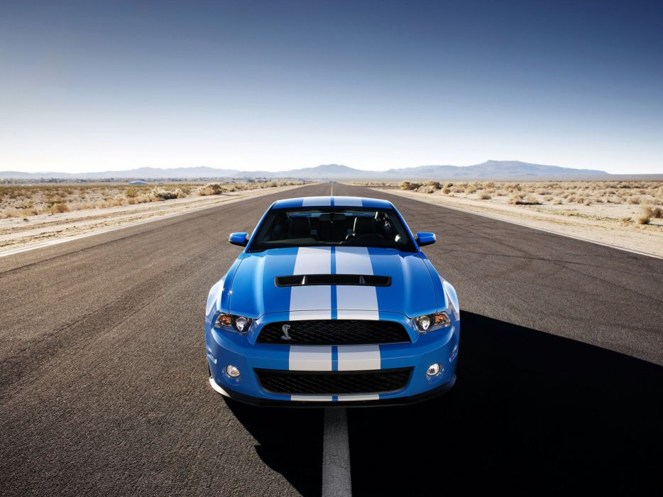 2009 Shelby GT500 ford mustang muscle r wallpaper