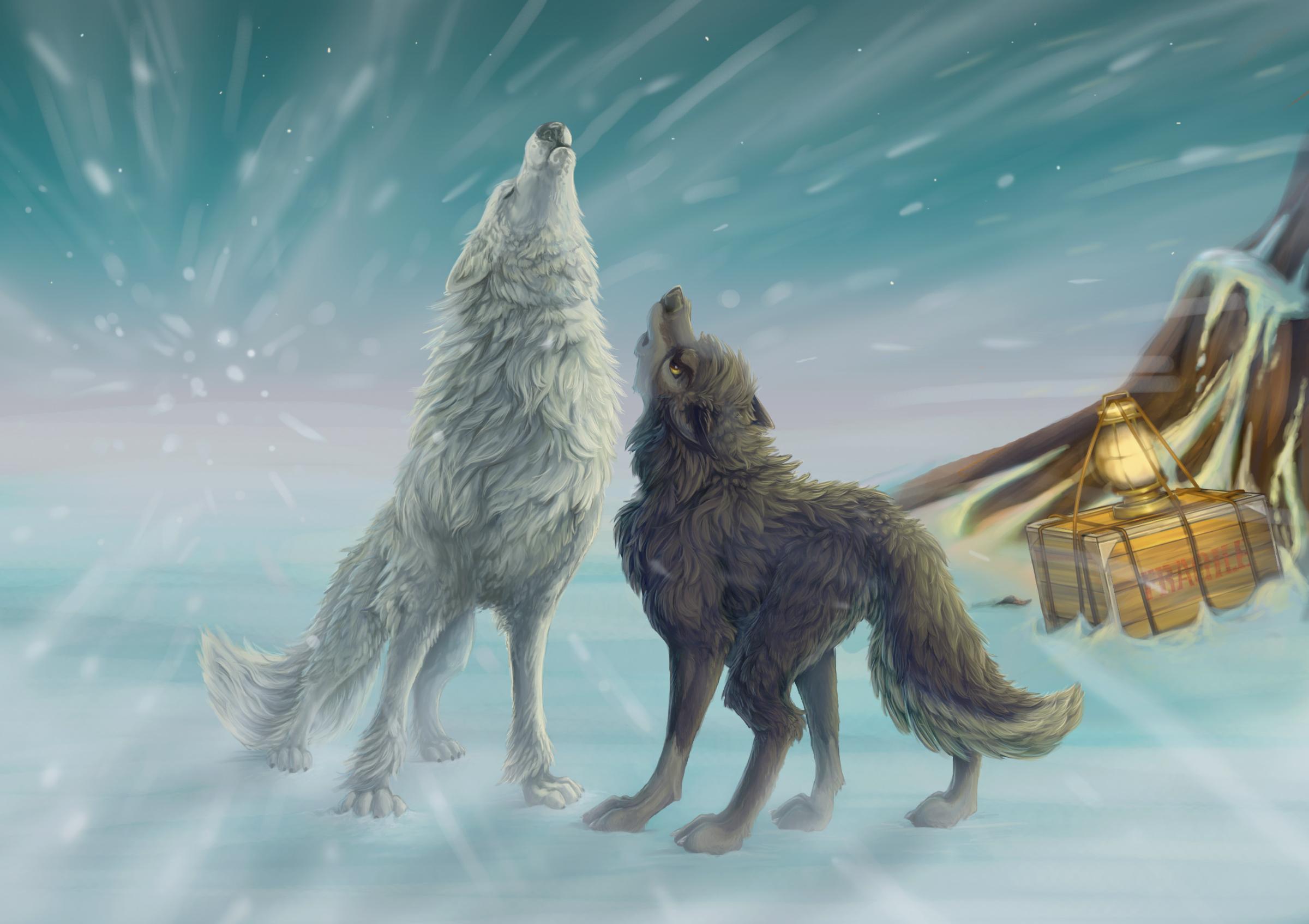 Wolf Howl Drawing wallpaper | 2400x1696 | 97193 | WallpaperUP
