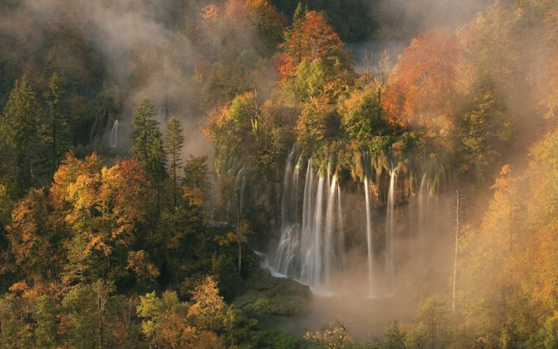 autumn colors mist morning light of dawn forest wallpaper
