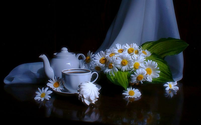 cup of chamomile wallpaper