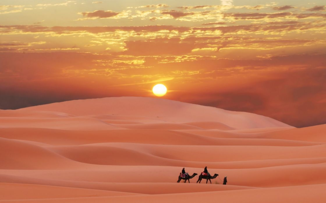 Sahara desert Morocco berber sunset camel sand wallpaper