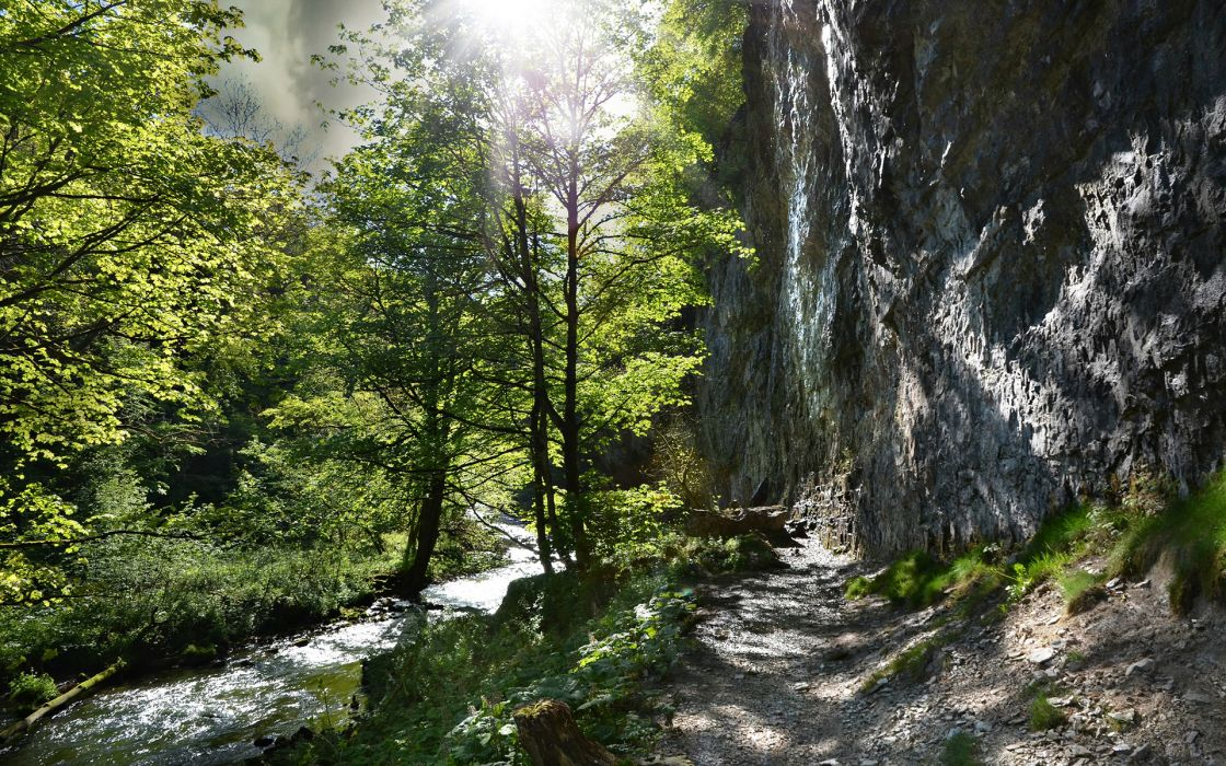 Sunlight Path Trail Forest River Trees Rock Stone wallpaper