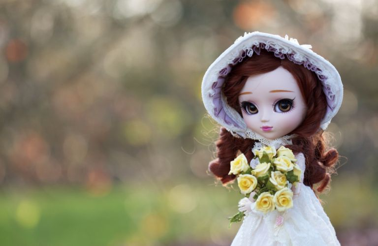 Toys Bouquets Doll Brown haired wallpaper