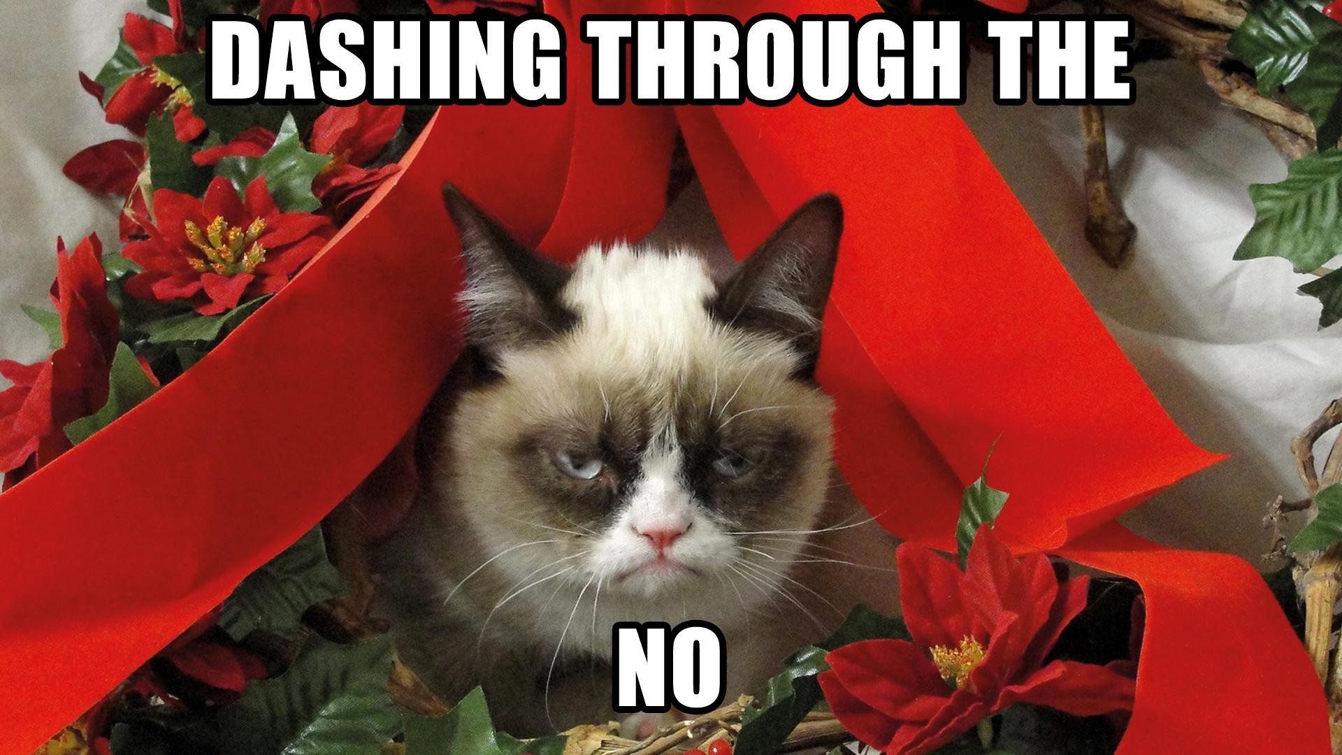 grumpy cat meme christmas tree - photo #6