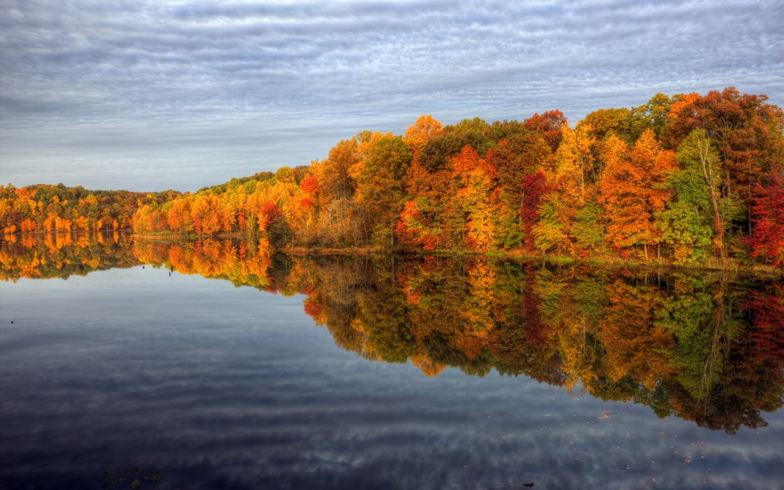 nature autumn colors water trees sky reflection wallpaper