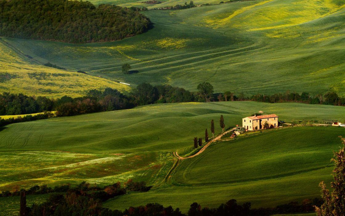 Tuscany fields trees greenery wallpaper