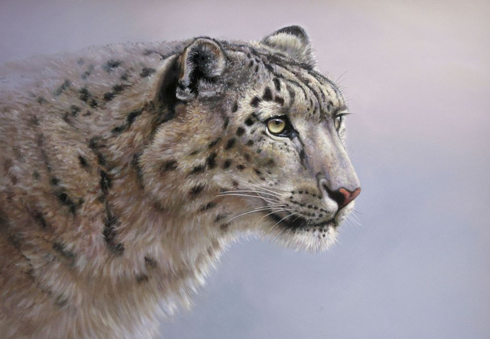 Big cats Snow leopards Painting Art Glance wallpaper