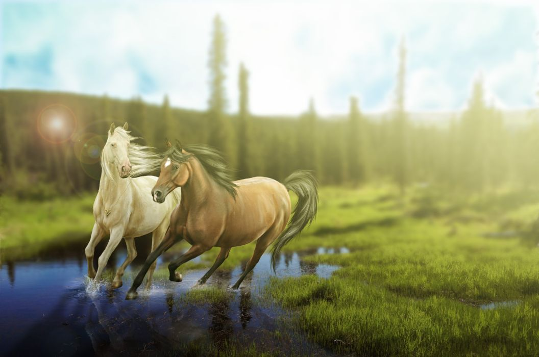 Horses Grass Animals painting wallpaper
