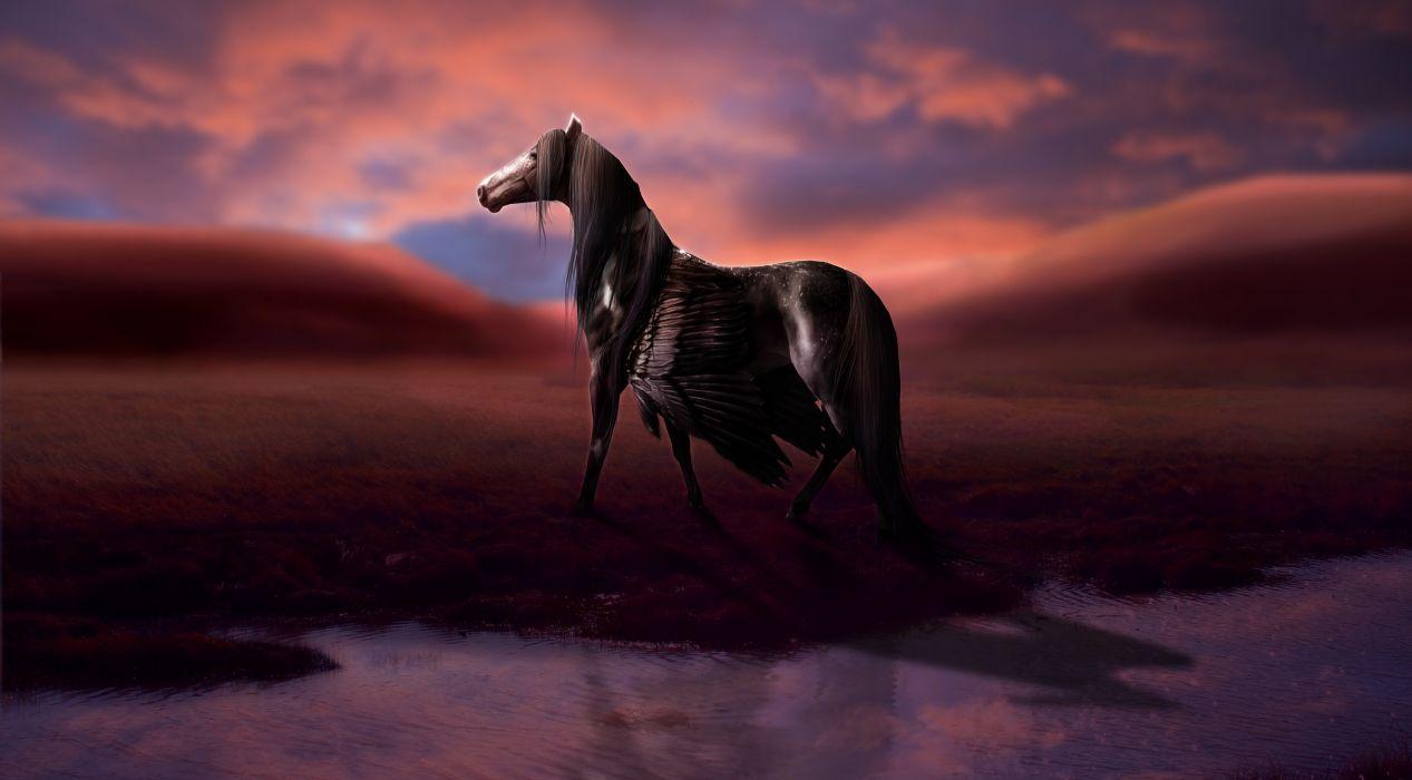 Magical animals pegasus black fantasy horse wallpaper 2976x1644 magical animals pegasus black fantasy horse wallpaper voltagebd Images