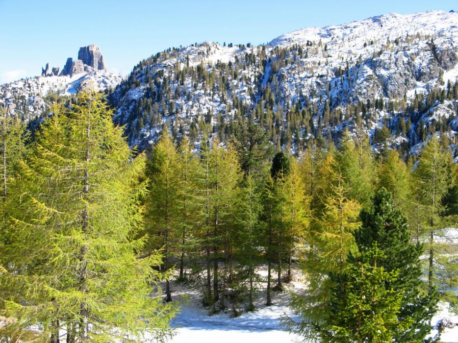 Mountains Italy Scenery Alps Trees Nature wallpaper