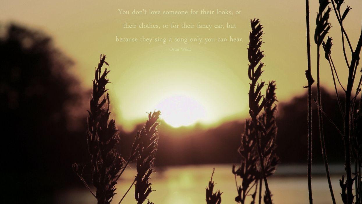 Oscar Wilde Love Hear Sunset mood bokeh wallpaper