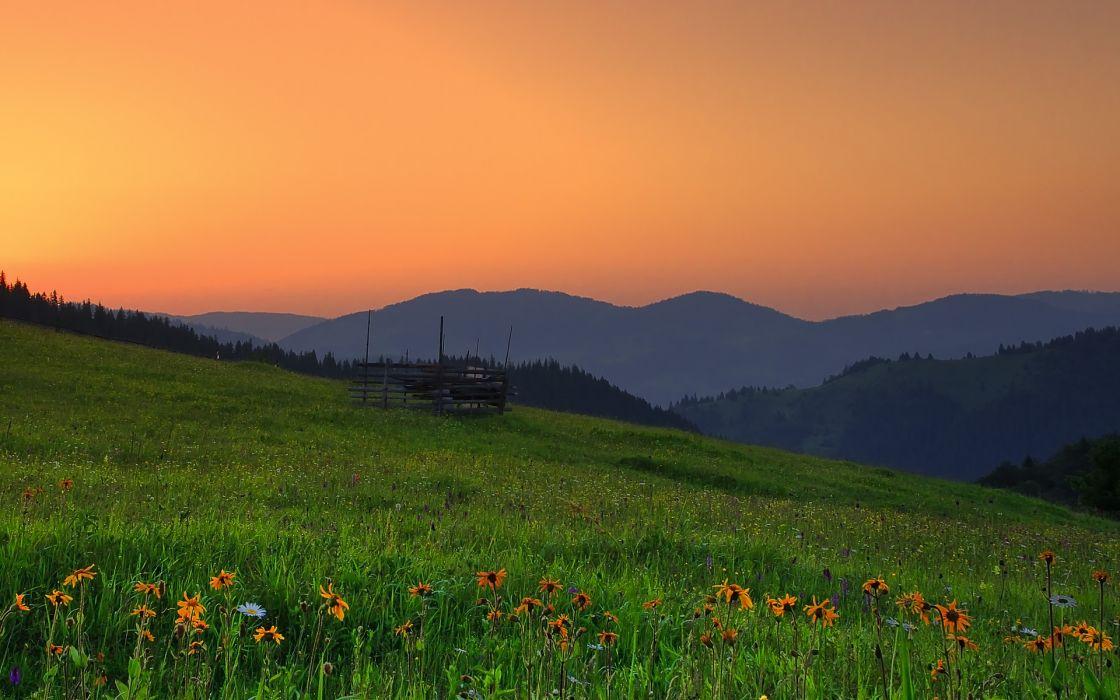 romania hills sunset field flowers landscape wallpaper