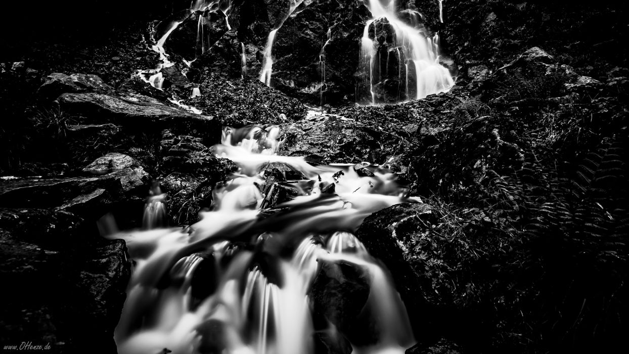 Stream BW Forest river wallpaper