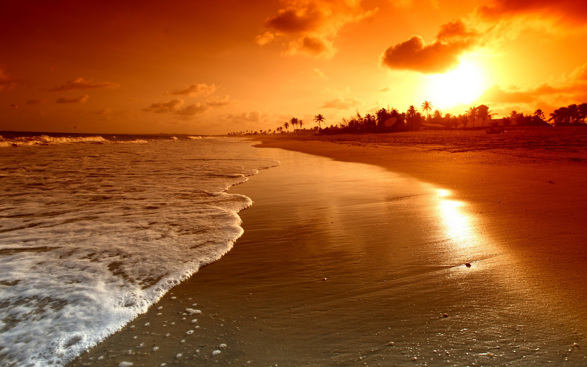 Sunrise Palms Sea Beautiful Nature Landscape Water Sky Clouds Scene Waves Beach Sunset Wallpaper