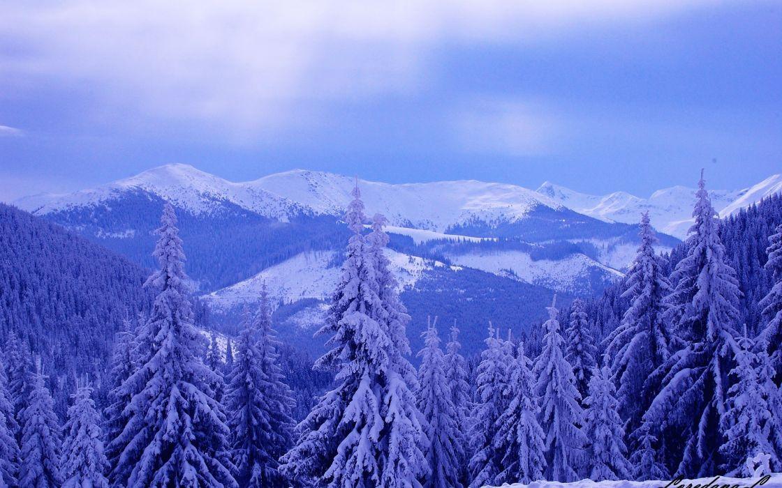 winter mountains hills trees snow landscape wallpaper
