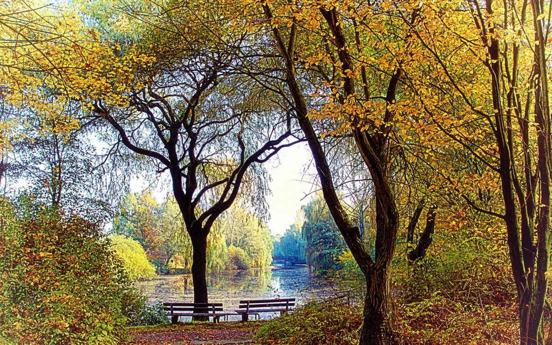 autumn park lake benches mood wallpaper