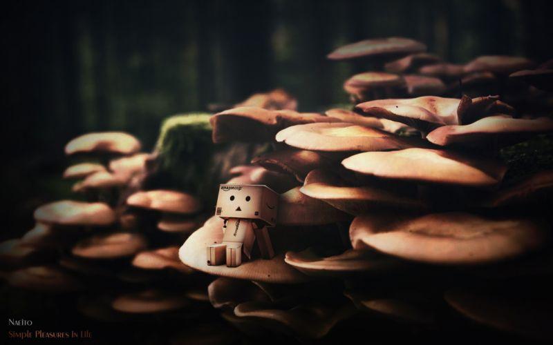 Danbo Mushrooms wallpaper
