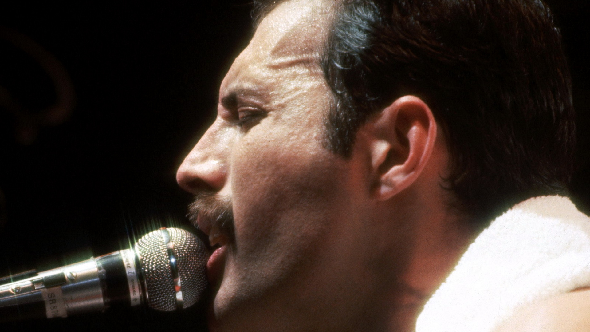 Farrokh Bulsara 5 September 1946 24 November 1991 known professionally as Freddie Mercury was a British singer songwriter and record producer best known as