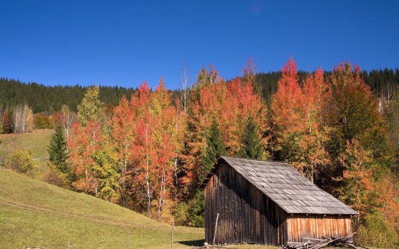 fall hills house landscape autumn wallpaper