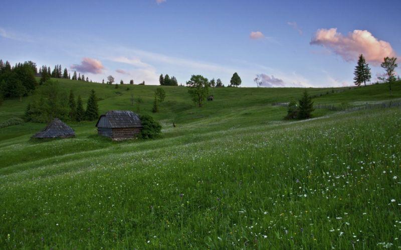 meadows hills house trees landscape wallpaper