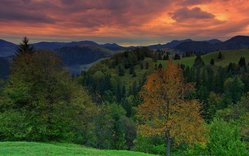 mountains hills forest trees sunset landscape sky wallpaper