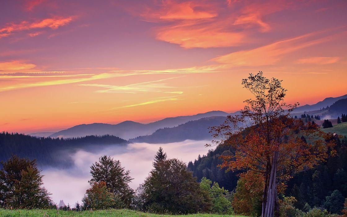 sunset mountains trees fall landscape autumn fog sunrise wallpaper