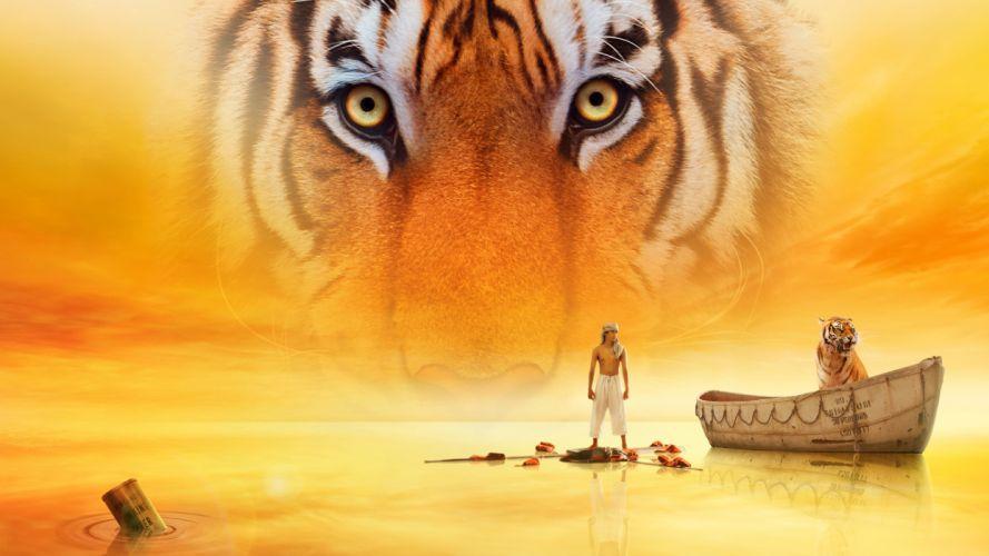 LIFE-OF-PI tiger tigers f wallpaper