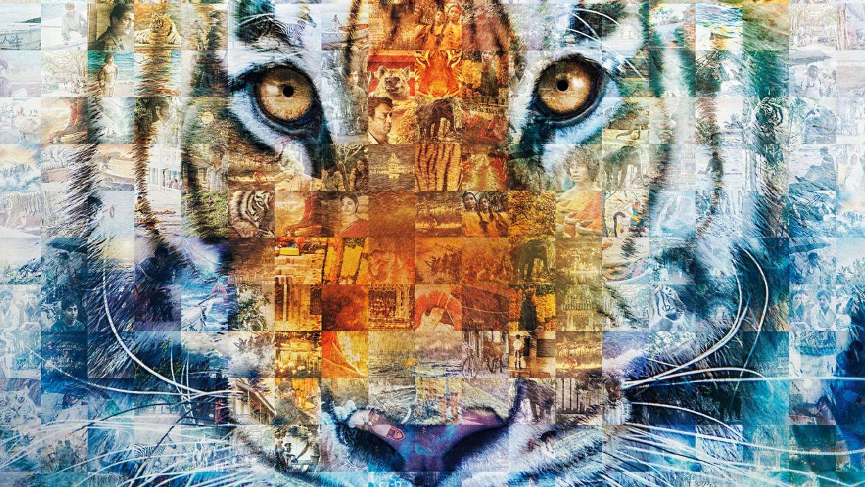 LIFE-OF-PI tiger tigers wallpaper