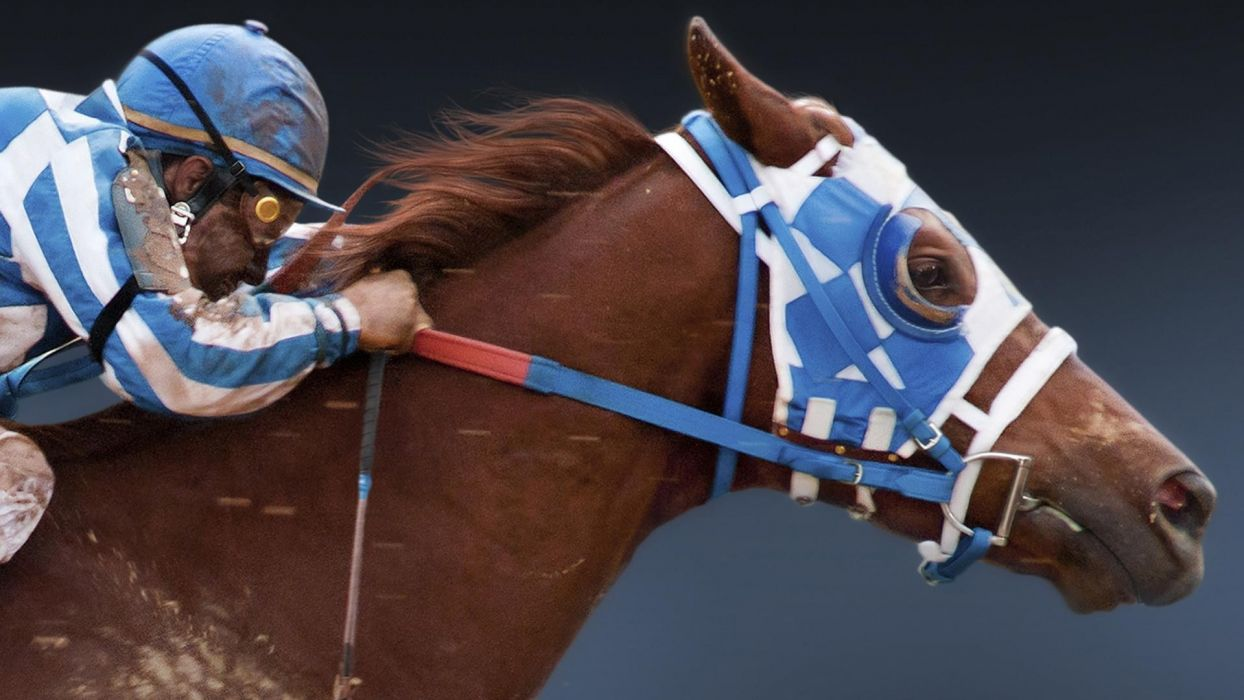 SECRETARIAT f wallpaper