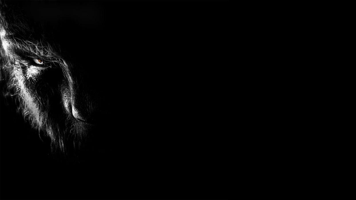 the wolfman dark werewolf f wallpaper | 1920x1080 | 103000 | wallpaperup