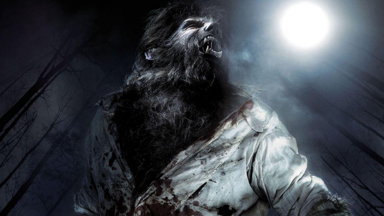 the wolfman dark werewolf wallpaper | 1920x1080 | 103003 | wallpaperup