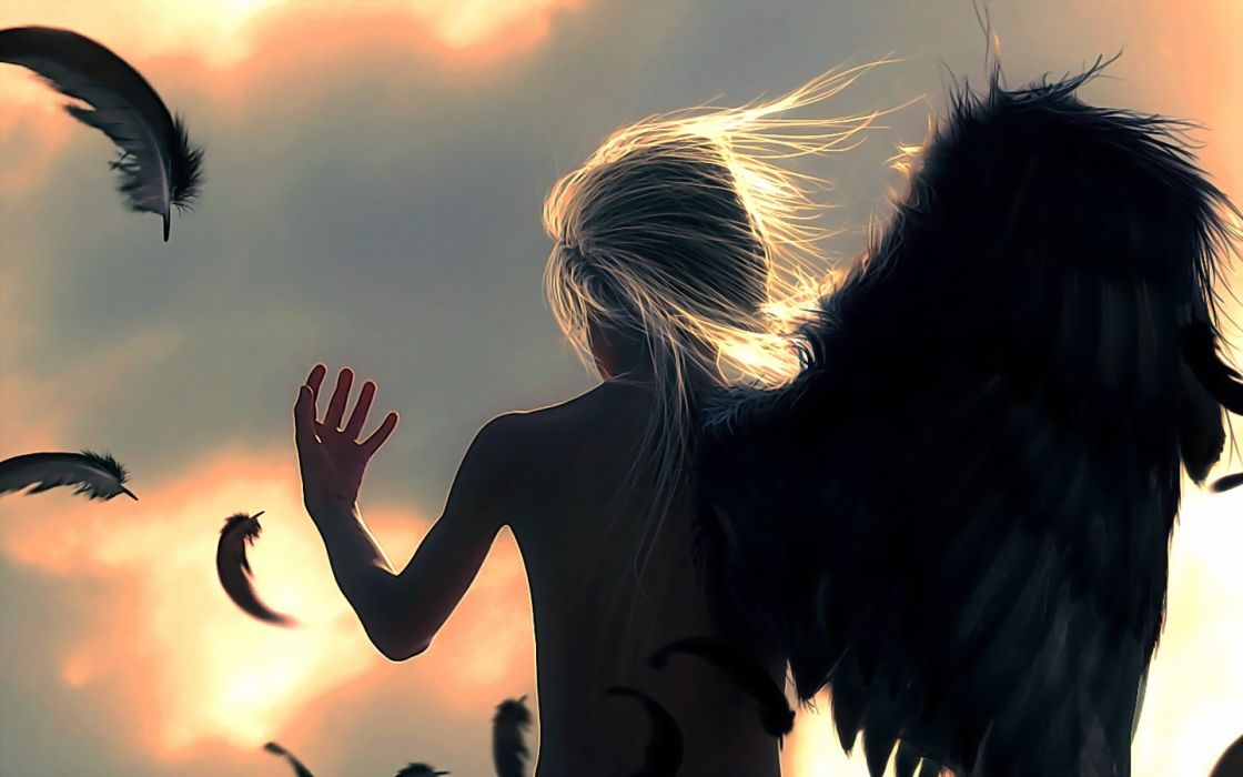 Angels Fantasy angel feather feathers silhouette wallpaper
