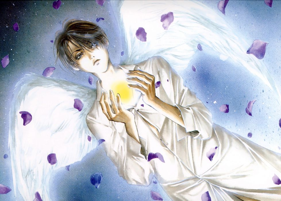 Angel Sanctuary    f wallpaper