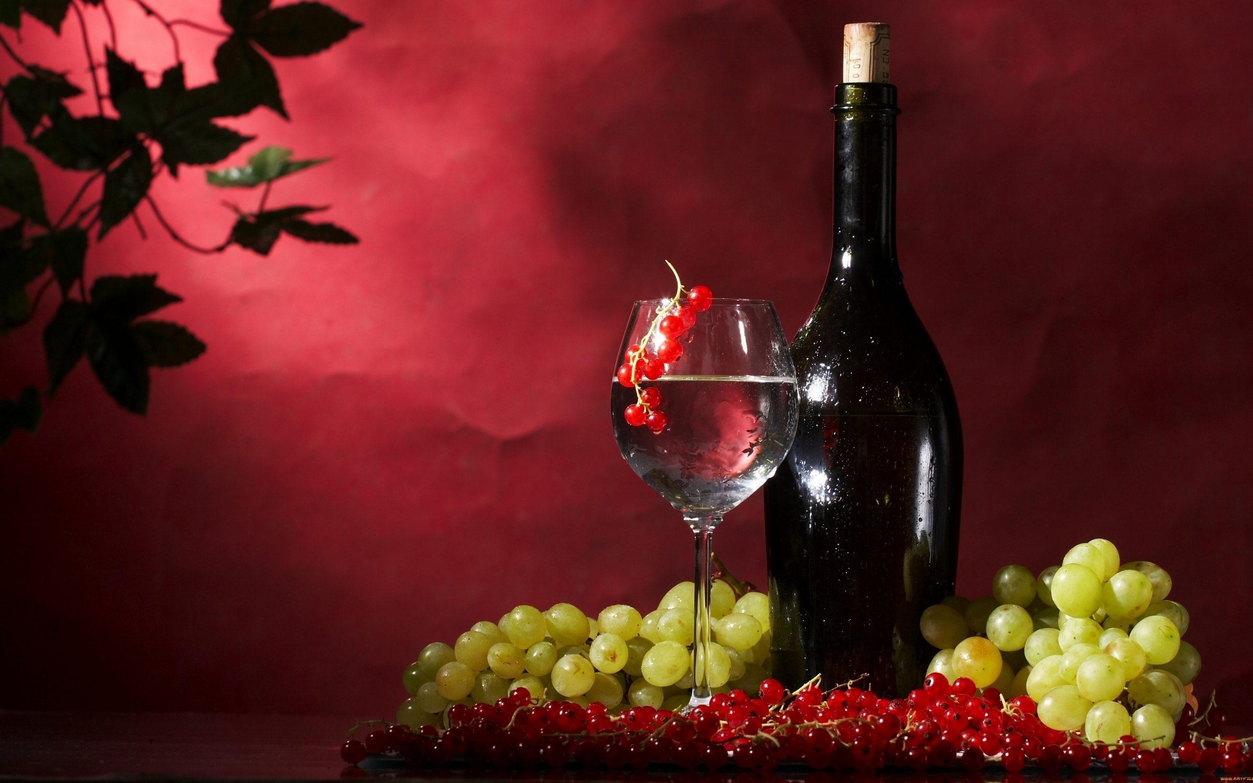 cate wallpapers grape and - photo #42