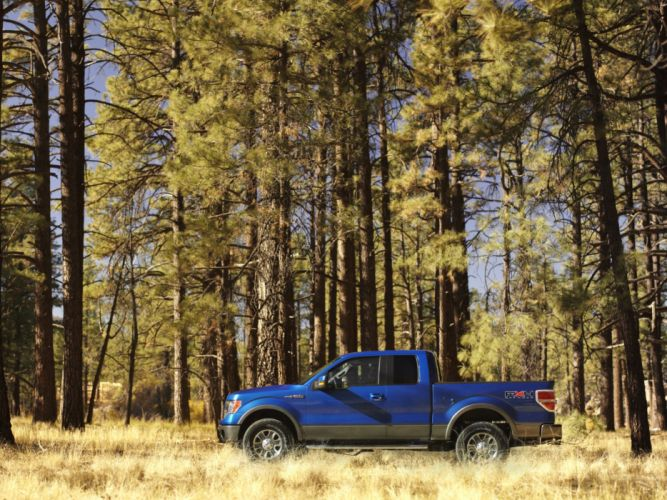 2008 Ford F-150 FX4 4x4 truck d wallpaper