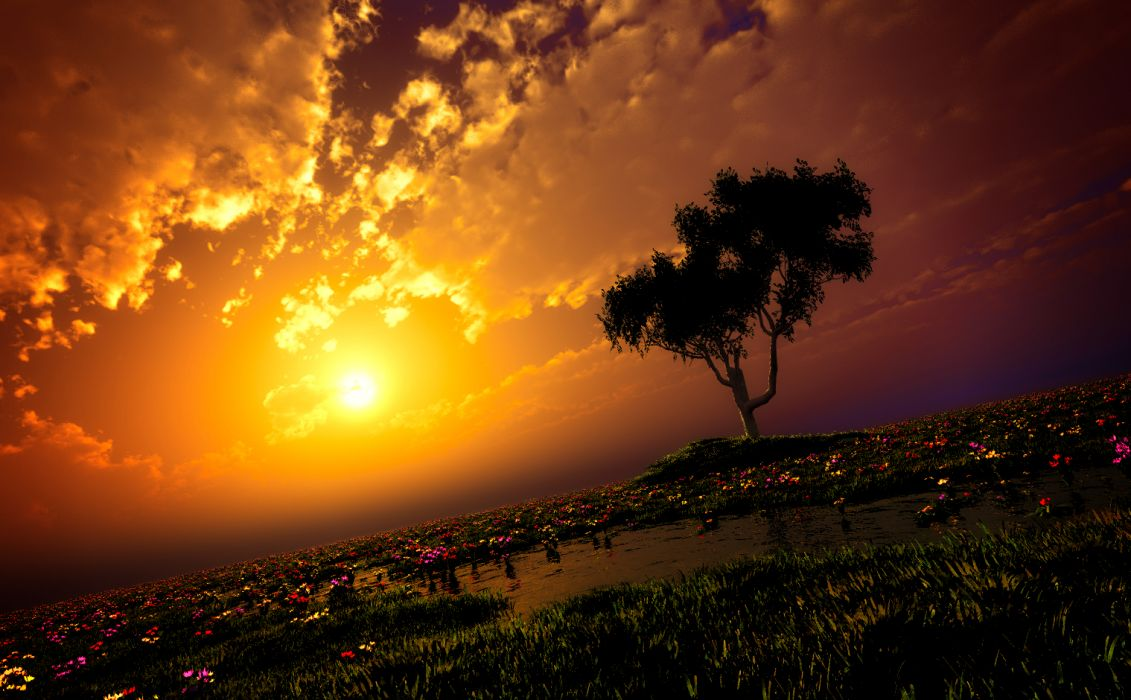 original clouds flowers grass original scenic sky sunset tree water y-k wallpaper