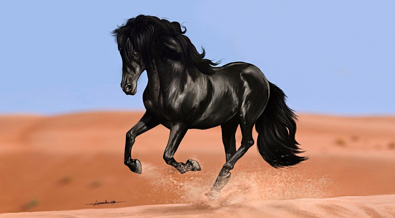 Horses Black Animals horse painting paintings wallpaper