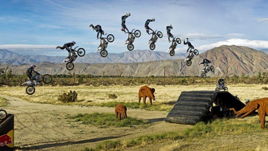 Stop Action Jump motorcycle stunt extreme elephant elephants motocross sports bike wallpaper