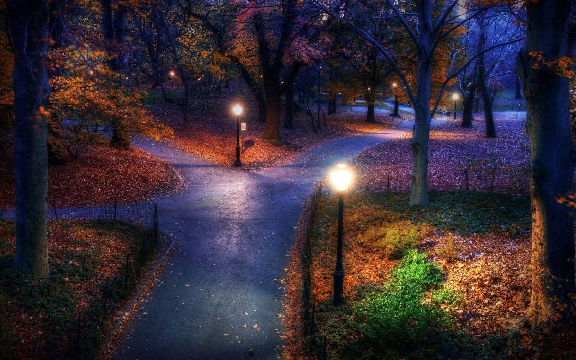 park night fall lights autumn garden park wallpaper