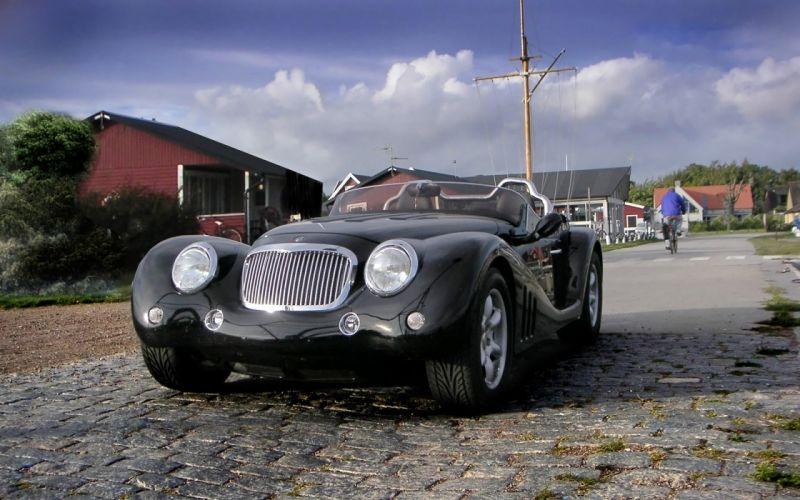 2013 Leopard Roadster retro fs wallpaper
