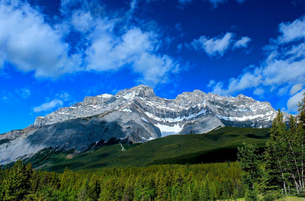 Banff Alberta Canada Forest wallpaper