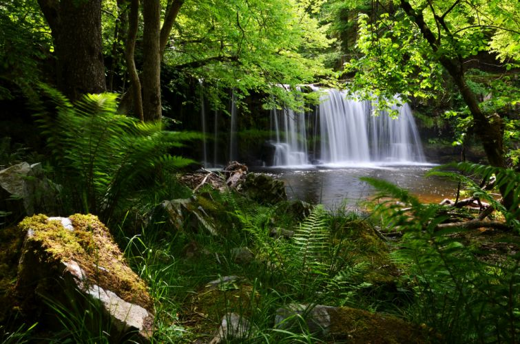 Brecon Beacons National Park England UK waterfall forest fern wallpaper