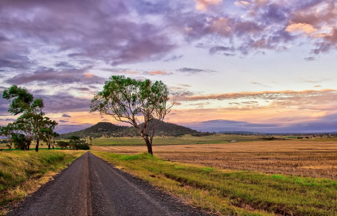 field sunset road nature wallpaper