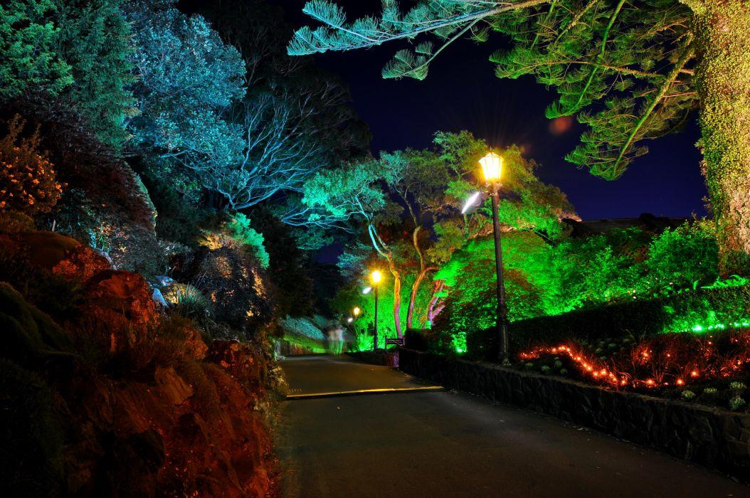 Gardens Roads New Zealand Wellington Botanical Night Street lights Nature garden wallpaper
