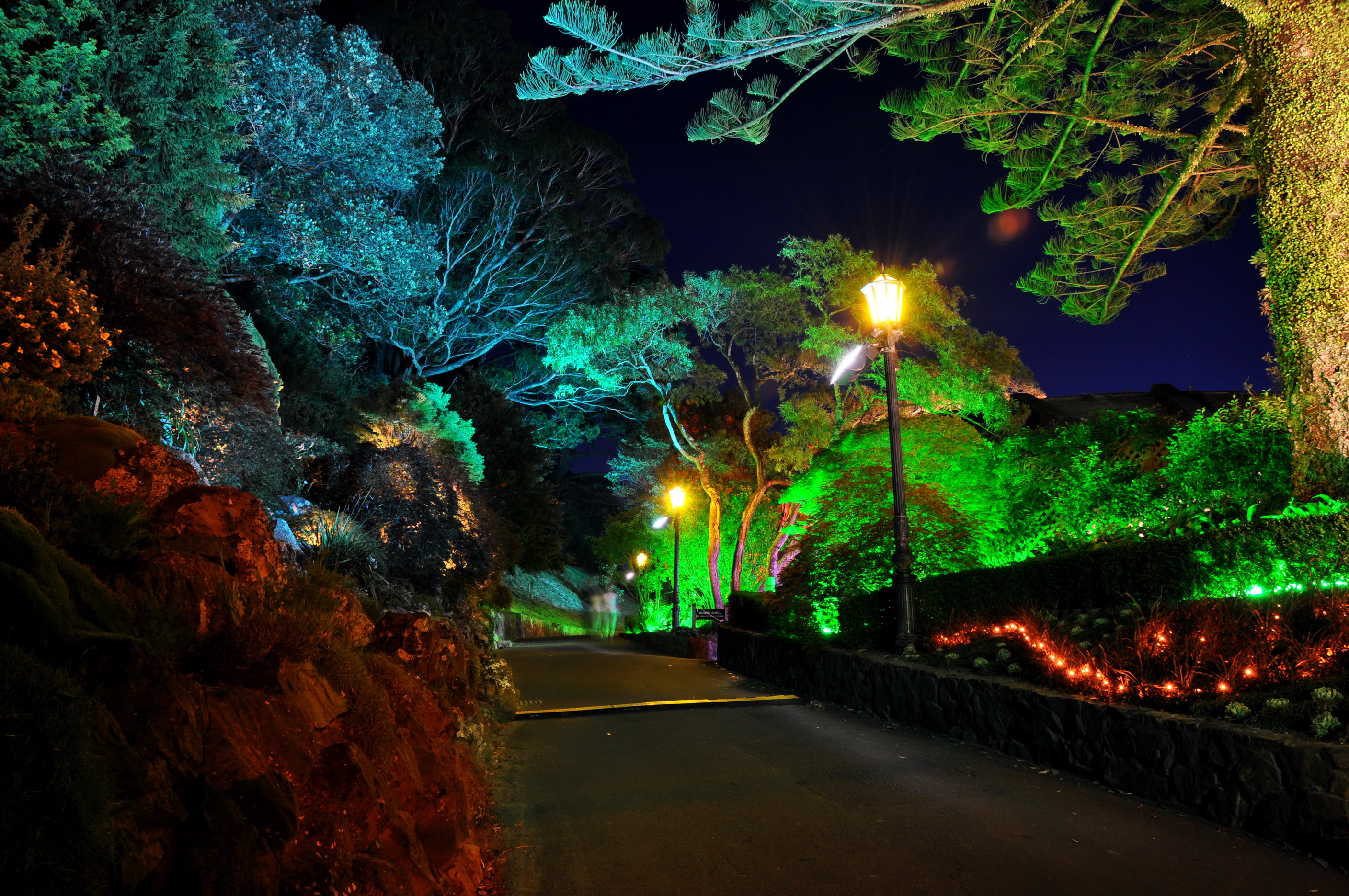 Gardens roads new zealand wellington botanical night street lights nature garden wallpaper - Night yard landscaping with outdoor lights ...
