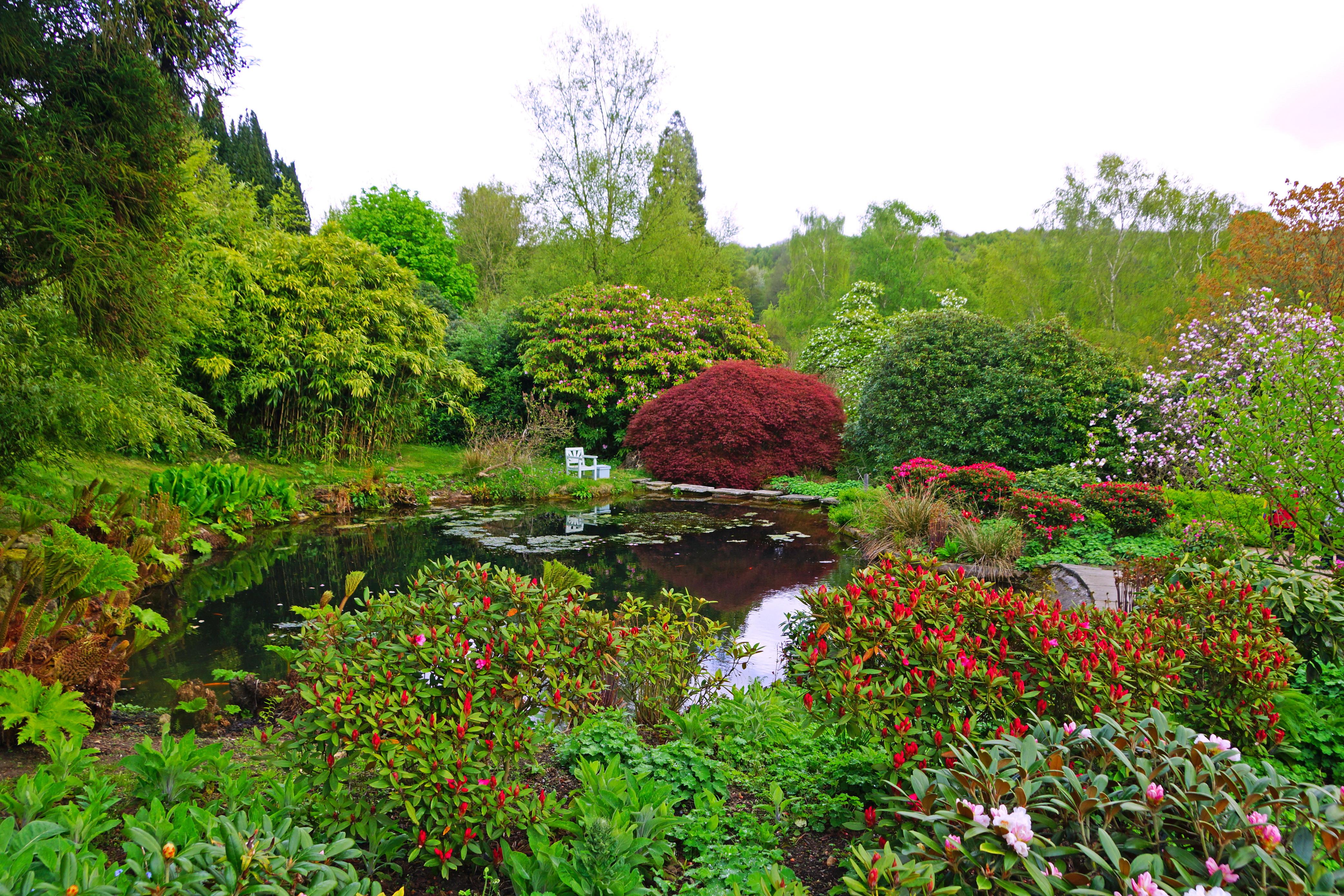 Charming Gardens England Pond Sevenoaks Charwell Nature Garden Wallpaper | 4168x2779  | 112755 | WallpaperUP